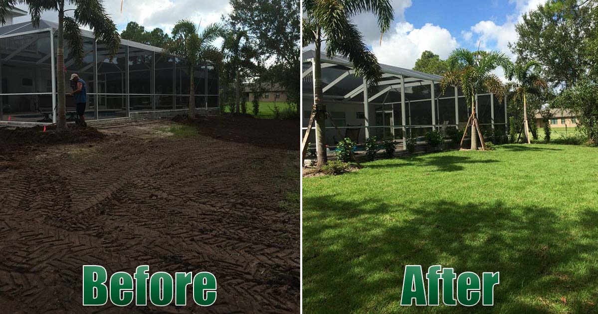 New landscaping resod before and after